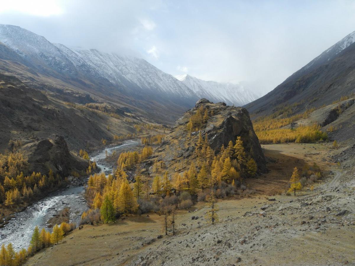 Горная река в ущелье на фоне заснеженного горного хребта